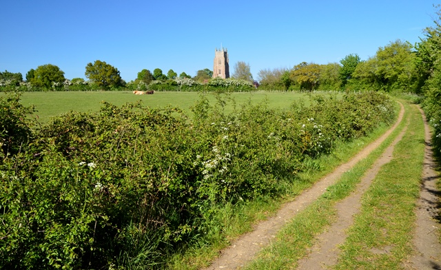 Stoke by Nayland footpath